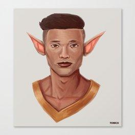 Chad, the Karate Elf Canvas Print