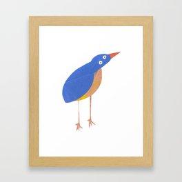 Mr Kingfisher Framed Art Print