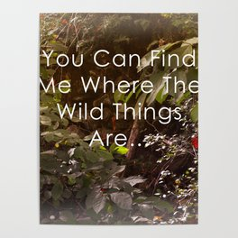 The Wild Things Poster