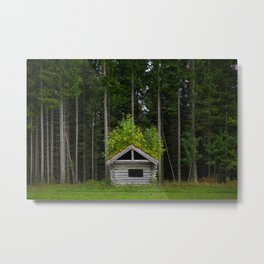 Trees On A Cabin (Norway) Metal Print