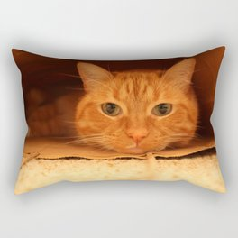 Cat in a Bag Rectangular Pillow