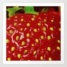 Strawberry Macrophotography Art Print