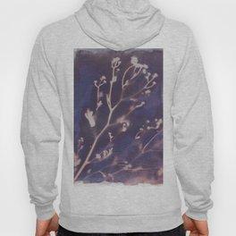 Cyanotype No. 12 Hoody