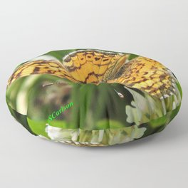 A Mylitta Crescent Butterfly at Rest Floor Pillow