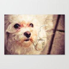 old dog Canvas Print