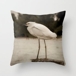Aged and Colorized Snowy Egret on Pillar Animal / Wildlife Photograph Throw Pillow