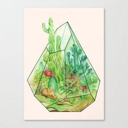 DeserTerrarium Canvas Print