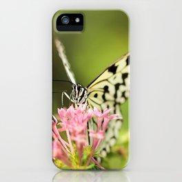butterflies #society6 #decor #buyart iPhone Case