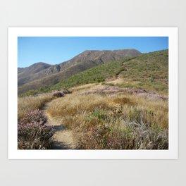 Big Sur Hidden Path Art Print
