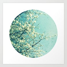 Blossom circle Art Print