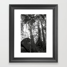 Umbilical Framed Art Print