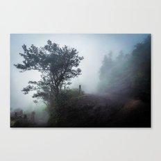 Foggy Pacaya Canvas Print