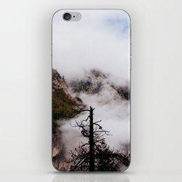 Misty Tree at Yosemite iPhone Skin