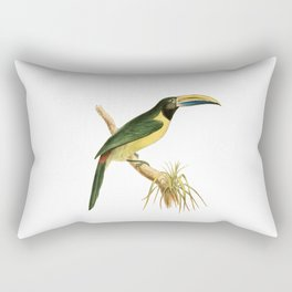 Green Aracari Bird Illustration by William Swainson Rectangular Pillow