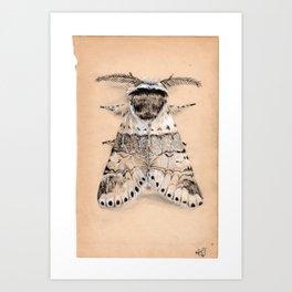 Better than a butterfly Art Print