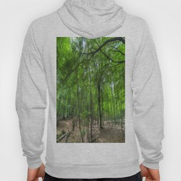 The Ancient English Forest Hoody