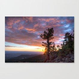 Grand Canyon, Parashant International Night Sky Province Canvas Print