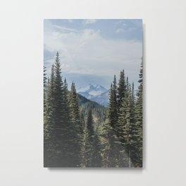 Garibaldi Provincial Park II Metal Print