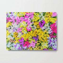 Meadow x Ultravibrant Metal Print