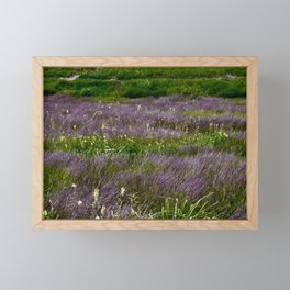 Fields of Grass Framed Mini Art Print