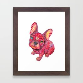 Raspberry frenchie Framed Art Print