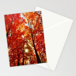 Sun in the Trees Stationery Cards