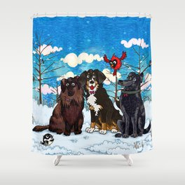 Three Dogs Posing in Winter Shower Curtain