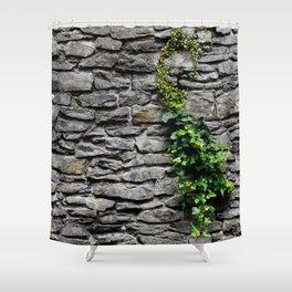 Ghent's Castle Walls Shower Curtain