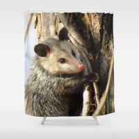 alabama Shower Curtains featuring Alabama Possum by Chuck Buckner