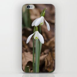 Snowdrop pair iPhone Skin
