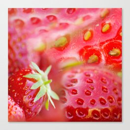 Fresh organic strawberries Canvas Print