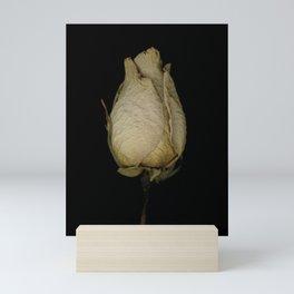 Thomas Mini Art Print