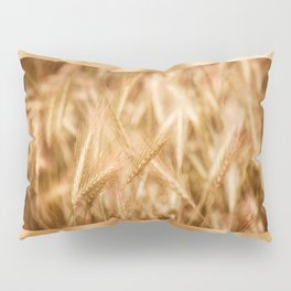 Golden ripe cereal ears grow on field Pillow Sham