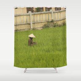 Rice Fields, Vietnam Shower Curtain