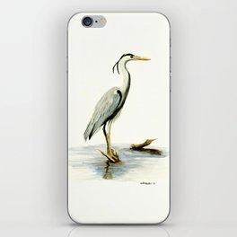 Blue Heron - watercolor bird, home decor, nursery wall art iPhone Skin