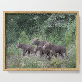 Four Brown Bear Cubs Serving Tray