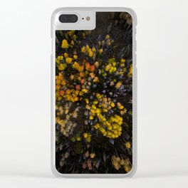 From Above Clear iPhone Case