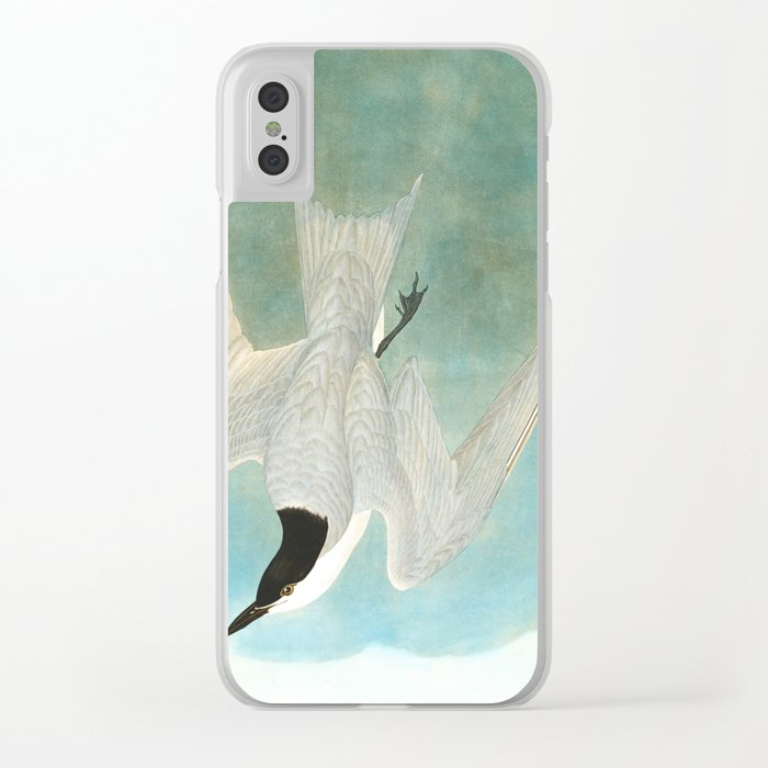 Marsh Tern Clear iPhone Case
