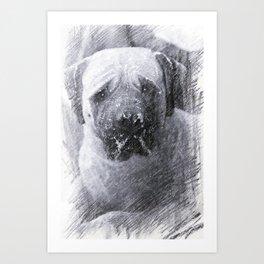 Old Dog Art Print