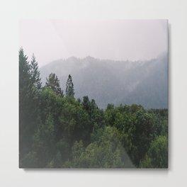 (saratoga hills) Metal Print