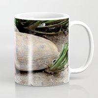 tortoise Mugs featuring Tortoise by lennyfdzz