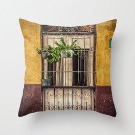 Casco Viejo Door Throw Pillow