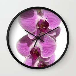 Bodacious bloom Wall Clock