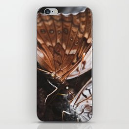 Two Butterflies iPhone Skin