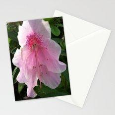 azelia Stationery Cards