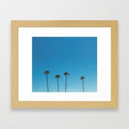 Summer Palms Framed Art Print