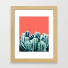 Cactus on Coral #society6 #decor #buyart Framed Art Print