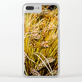 Ears Of Wheat. Thanksgiving theme Clear iPhone Case
