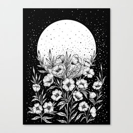 Moon Greeting Canvas Print