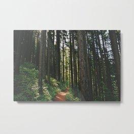 Happy Trails Metal Print